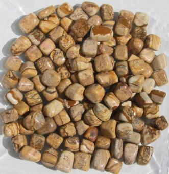 Landschaftsjaspis Trommelsteine 150 g.